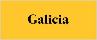 Galicia-Mexico_banner.jpg